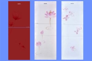 Tempered Glass Refrigerator Doors with AS/NZS2208: 1996, BS6206, En12150 Certificate pictures & photos