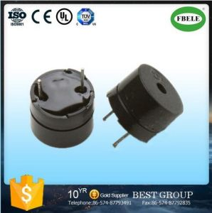 Low Current 12V/24V DC Piezo Buzzer with Timer (RoHS approved) pictures & photos