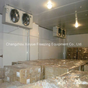Low Temperature Cold Room for Better Meat and Aquatic Products pictures & photos