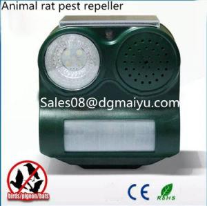 Advanced Effective PIR Ultrasonic Animal Rat Pest Repeller Solar Bird Repeller pictures & photos