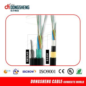 24 Core Indoor FTTH Optic Fiber Cable pictures & photos