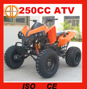 Cheap Price 250cc ATV with High Quality pictures & photos