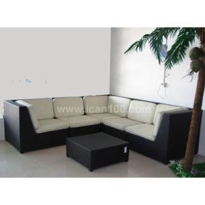 Leisure Furniture Aluminum Rattan Sofa (WS-06040) pictures & photos