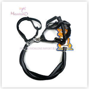 43G Pet Accessories Products Dog Lead with Harness pictures & photos