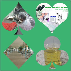 99% Ketoconazole Powder Manufacturing, High Quality, Low Price pictures & photos