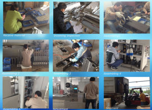Bread Horizontal Pillow Packing Machine (ZP420) pictures & photos