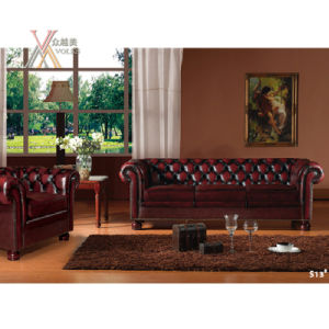 Living Room Antique Style Leather Sofa Set (S13)
