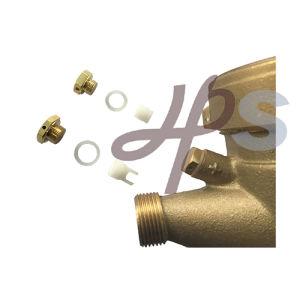 Multi Jet Brass Water Meter Adjust Screw pictures & photos