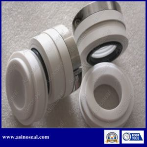 Wb2 PTFE Bellow Mechanical Seal for Pump