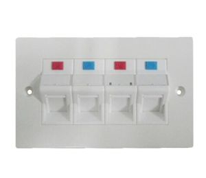 4 Port Flat Type Network UTP Cat5e CAT6 Wall Faceplate pictures & photos