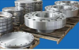 Stainless Steel Pipe Fitting Flange