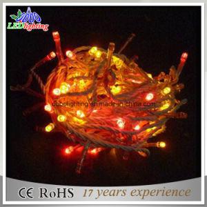 Holiday Light Warm White LED Christmas Lights / LED Fairy Lights / LED Fairy Light String Lights pictures & photos