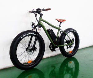 Fat Tire 500W Mountain Electric Bike