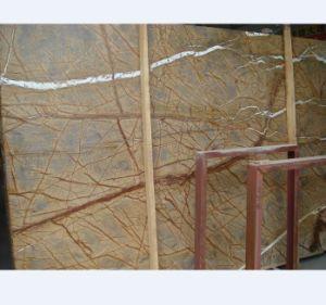 Rainforest Brown, Green Marble Slabs Floor Tiles pictures & photos