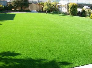 Home Decorative Landscape Artificial Grass pictures & photos