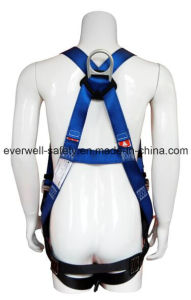 Seat Belt with Five-Point Fixed Mode (EW3000BH) pictures & photos