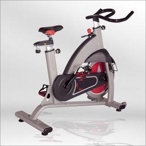 china luxurious spinning bike indoor spin bike gym spinning bike for sale bse01 china. Black Bedroom Furniture Sets. Home Design Ideas