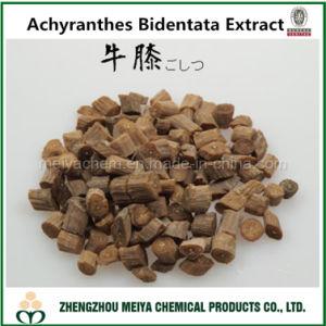 Natural Anti-Hypertensive Powder Achyranthes Bidentata Plant Extract with Achyranthan pictures & photos