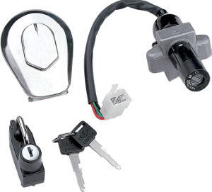 Motorcycle Switch Locks (LY125) pictures & photos