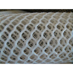2016 Good Price Hexagonal Green Plastic Plain Nettings pictures & photos