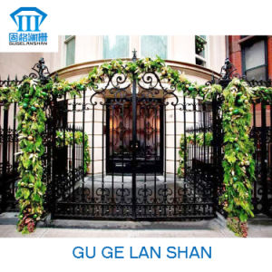 High Quality Crafted Wrought Iron Gate/Door 002 pictures & photos