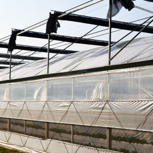 Commercial Multi Span Industrial Greenhouse for Sale pictures & photos
