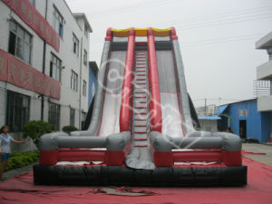 New Design Giant Inflatable Double Slide for Adults for Commercial Use pictures & photos