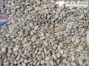 Mixed Color High Polished Natural Pebble for Garden, Home, Yard pictures & photos