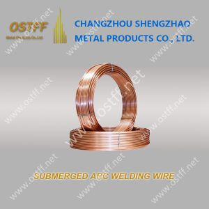 Top Quality Submerged Arc Welding Wire (EM12K) From China Manufacturer
