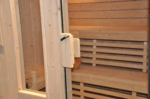 Traditional Sauna Room (A-807) pictures & photos
