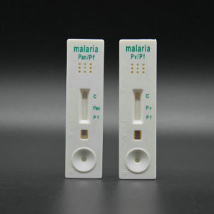 Dengue Ns1 - Dengue Rapid Test- Rapid Test Strip (Colloidal Gold) pictures & photos