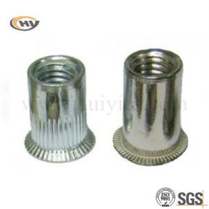 Stainless Steel Falt Head Rivet (HY-J-C-0390)