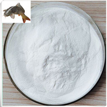 Promotional Pure Fish Scale Collagen on Sale pictures & photos
