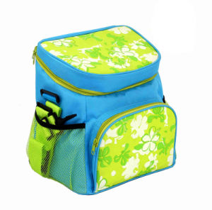 Hot New Products for 2016 Ice Cooler Bag with Printing pictures & photos