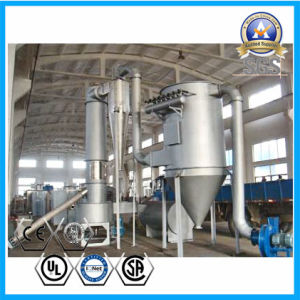 Chemical Oxide Flash Dryer for Zirconia, Magnesium Stearate pictures & photos