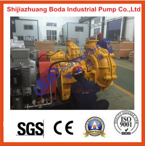 Supplier of Complete Replacement Pumps pictures & photos