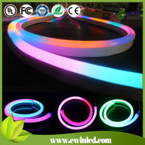 TM1804 Digital RGB Neon Flex with 60LEDs/M, Cutting Length 10cm pictures & photos