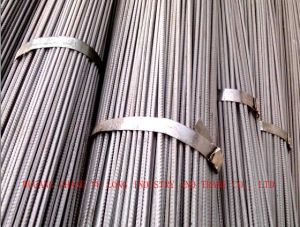 Hot Rolled Deformed Steel Bar/Rebar Steel/Iron Rod for Construction pictures & photos