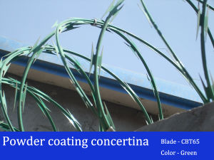 Cbt65 Powder Coating Colors Concertina Razor Barbed Wire pictures & photos