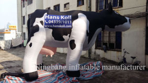 2016 Custom Make Inflatable Cartoon Character Moving Cartoon Advertising Inflatable Cow pictures & photos