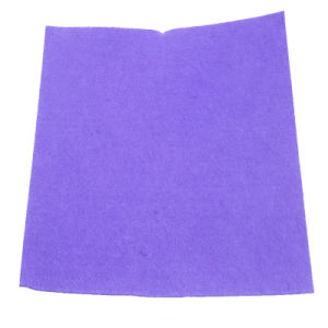 Viscose and Polyester Needle Punched Nonwoven Fabric Cleaning Cloth pictures & photos