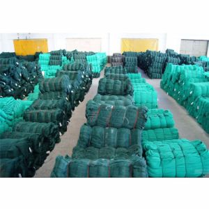 Anti Bird Netting Used for Us Market Made in China pictures & photos