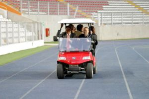 Utility Vehicle/Electric Car /Bus in Peru (DEL3022G2Z, 2+2-Seater) pictures & photos