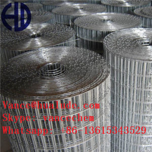 Steel and Plastic Stainless Welded Steel Wire Mesh pictures & photos