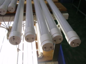 LED Warm-White T8 Tube Light pictures & photos