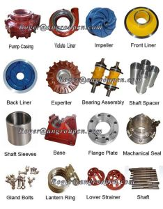 Pump Parts, Pump Rotor, Pump Bearing Assembly pictures & photos