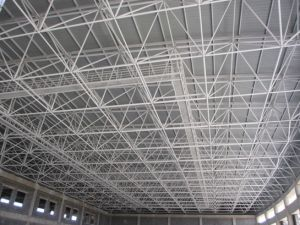 Best Price Steel Sheet Roof Panel Swimming Pool Roof pictures & photos