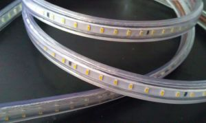 SMD3014 High Voltage Strip LED Rope Light pictures & photos