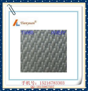 750bb Anti-Alkali Polypropylene PP Filter Cloth for Industrial Use pictures & photos