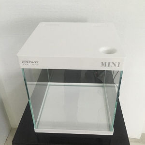 Professional Manufacture of Mini Glass Fish Tank